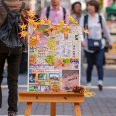 10月のイベント『第1回 秋の大収穫祭 2016』